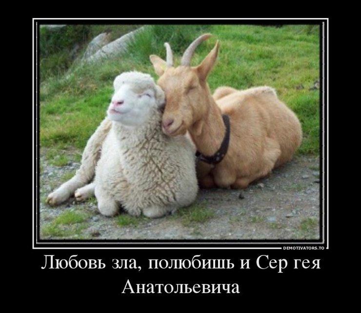 Любовь это Высказывания и цитаты известных людей